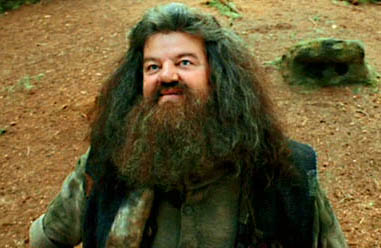 http://www.myfacemybody.com/wp-content/uploads/2010/12/hagrid.jpg